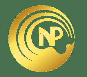 Nora Phoenix logo