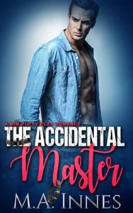 Accidental Master cover